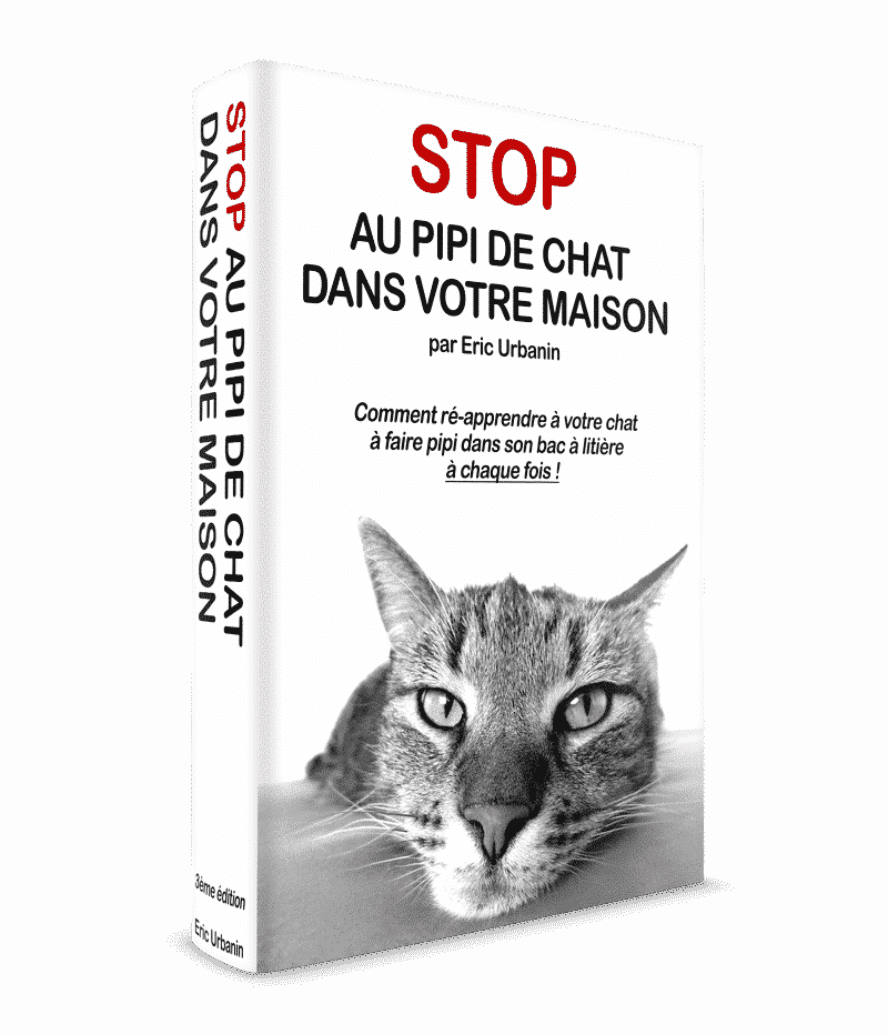 Guide stop pipi de chat