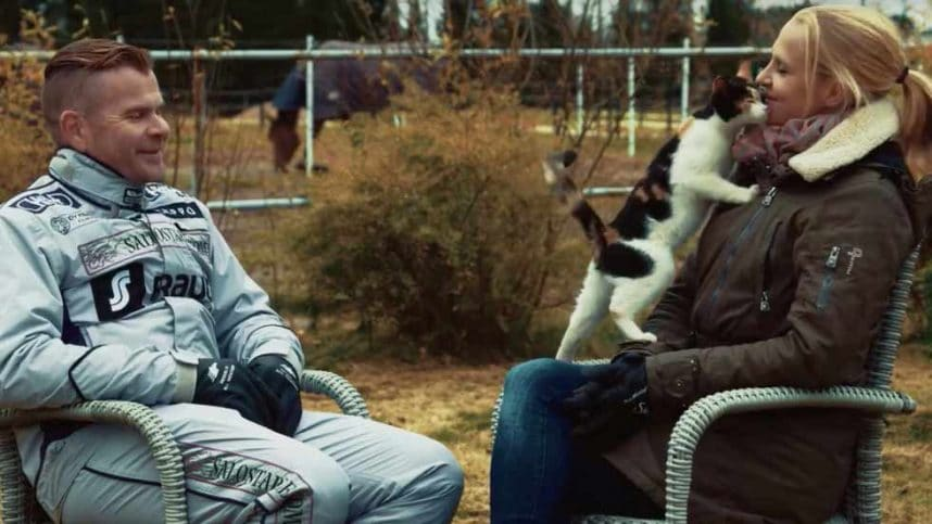 Friendly cat in stable interview