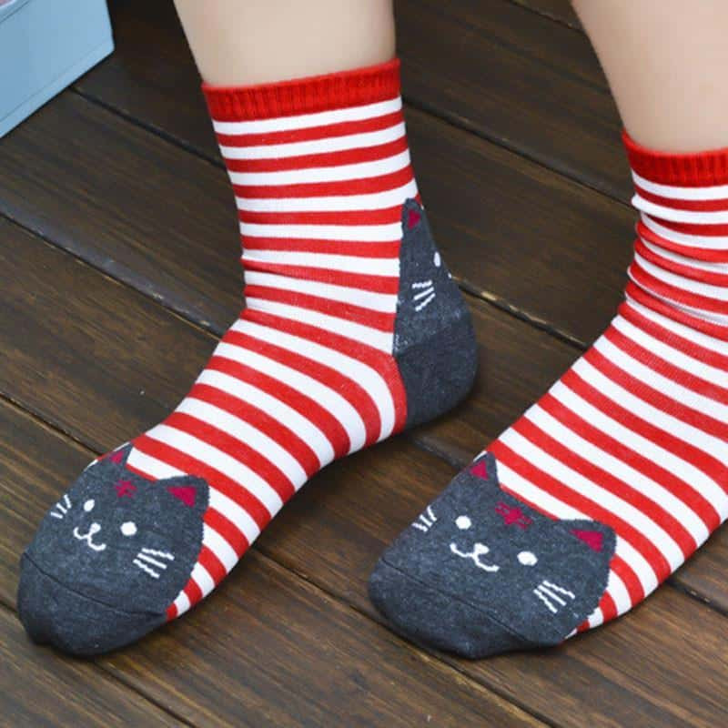 Chaussettes chat rayées 5