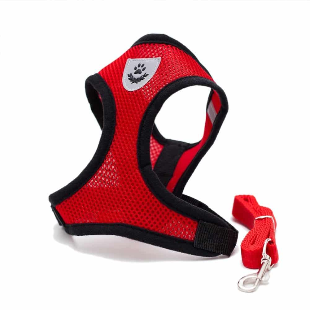 Harnais Grand Chat Ergonomique et Ajustable rouge